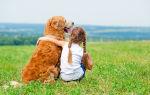 Собака для ребенка: как выбрать идеального питомца?